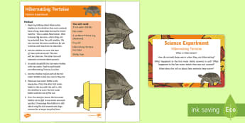 EYFS Hibernating Tortoise Science Experiment and Prompt Card Pack - EYFS Pets, Animals, National Pet Month, reptile, hibernation, burrow, tortoise, hibernate, heat, hab