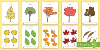 Fall Leaves Color Match Activity Sheets - fall, autumn, activity sheets, fall activity sheets, autumn activity sheets, color matching, color a