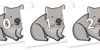 Numbers 0-31 on Wombat - 0-31, foundation stage numeracy, Number recognition, Number flashcards, counting, number frieze, Display numbers, number posters