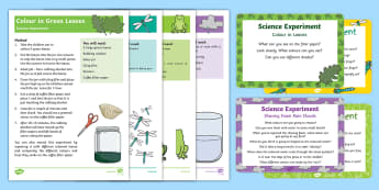 EYFS Jungle and Rainforest Science Experiments Resource Pack - Jungle and Rainforest, rain cloud, frog, dragonfly, leaves, growth, exploration, science, experiment