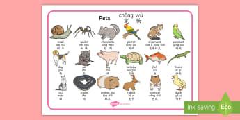 Pets Word Mat English/Mandarin Chinese/Pinyin - domestic animals, Pets Word Mat - Pet, word mat, writing aid, pets, cat, dog, rabbit, mouse, guinea