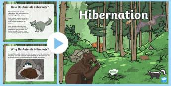 Hibernation PowerPoint