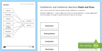 Endothermic and Exothermic Reactions Match and Draw - Match and Draw, gcse, chemistry, exothermic, endothermic, energy, energy transfer, heat, temperature, starter activity