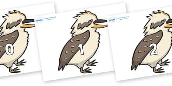 Numbers 0-100 on Kookaburras - 0-100, foundation stage numeracy, Number recognition, Number flashcards, counting, number frieze, Display numbers, number posters