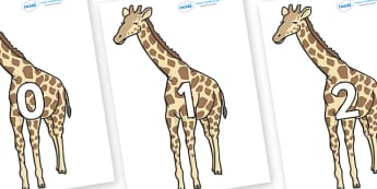 Numbers 0-31 on Giraffe - 0-31, foundation stage numeracy, Number recognition, Number flashcards, counting, number frieze, Display numbers, number posters