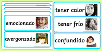 Large Detailed Emotions and Feelings Photo Word Cards Spanish-Spanish