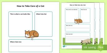 How To Take Care of a Cat Fact File  - Pets, pet, EYFS, KS1, take, care, look, after, family, member, members, vet, vet surgery, surgery, i