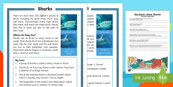 Sharks Differentiated Reading Comprehension Activity English/Italian - Sharks, sea creatures, KS1 reading, non-fiction, information, comprehension, questions, fact file