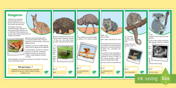 Australian Animals Factfile Display Posters - Literacy, australian animals, factfile, information, diet, habitat, Australia, animals, reading, com