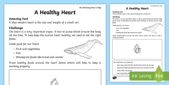 A Healthy Heart Activity Sheet - Amazing Fact Of The Day, activity sheets, powerpoint, june, starter, worksheet, morning activity, Ju