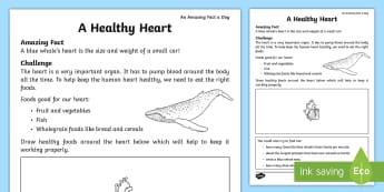 A Healthy Heart Worksheet / Activity Sheet - Amazing Fact Of The Day, worksheet / activity sheets, powerpoint, june, starter, worksheet, morning activity, Ju