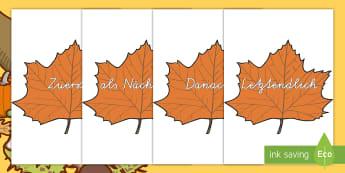 Temporale Konjunktive auf Herbstblättern für die Klassenraumgestaltung - Konjunktive, Grammatik, schreiben, lesen, temporale konkunktive, temporal konkunktiv, herbst, herbst