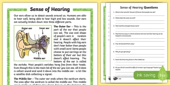 Sense of Hearing Differentiated Reading Comprehension Activity