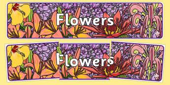 Flowers Display Banner - plants, flower, header, display