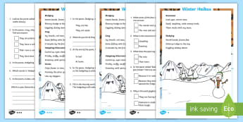 KS1 Winter Haikus Differentiated Activity Sheet - worksheet, understanding poetry, reading comprehension, weather poetry, Haiku poems, word meanings i