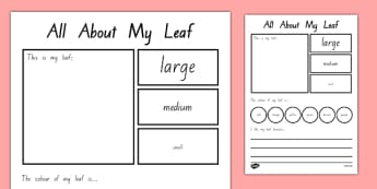 All About My Leaf Worksheet / Activity Sheet - nz, new zealand, all about, my lead, worksheet