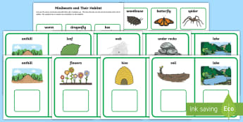 Workstation Pack Minibeasts and their Habitat Matching Activity Pack - Workstation Pack, TEACCH, minibeasts, independent work, matching, understanding the world