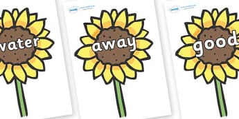 Next 200 Common Words on Sunflowers - Next 200 Common Words on  - DfES Letters and Sounds, Letters and Sounds, Letters and sounds words, Common words, 200 common words