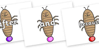 Connectives on Glowworm to Support Teaching on James and the Giant Peach - Connectives, VCOP, connective resources, connectives display words, connective displays