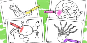Colouring Sheets to Support Teaching on Sharing a Shell - colouring, sheets, story book