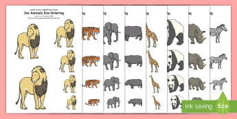 Zoo Animals Size Ordering Arabic - Arabic/English -  - EYFS, Early Years, KS1, Key Stage 1, Zoo, Animals, Maths, Mathematics, Size, Measure, EAL, Arabic.,A