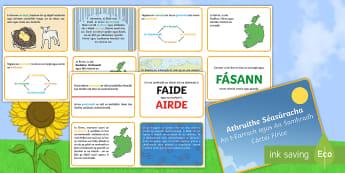 Cártaí Fírice, Athruithe Séasúracha, an t-Earrach agus an Samhradh - Seasonal Changes Spring and Summer Fact Cards, cártaí fírice, athruithe séasúracha, an t-Earrac