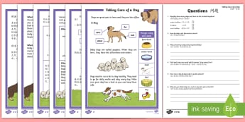 KS1 How To Look After a Dog Differentiated Reading Comprehension Activity English/Mandarin Chinese - Pets, pet, EYFS, KS1, take, care, look, after, family, member, members, vet, vet surgery, surgery, i