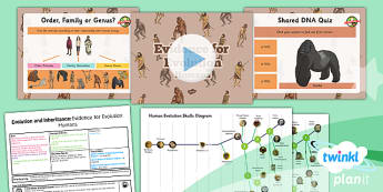 Science: Evolution and Inheritance: Evidence for Evolution Humans Year 6 Lesson Pack 5