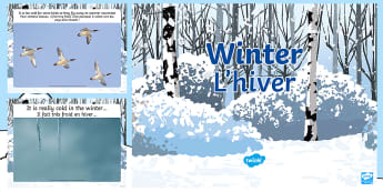 All About Winter PowerPoint English/French - winter, powerpoint, ice, snow, weather, cold, animals