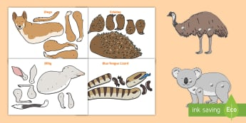 Australian Animals Split Pin Activity  - Australian Curriculum Biological sciences, ACSSU017, emu, platypus, Tasmanian devil, echidna, blue t