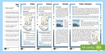 PPolar Animals Differentiated Reading Comprehension English/Romanian - Winter 2016/17, weather, cold, freezing, fur, insulation, polar bear, penguin, blizzard, Arctic, Ant