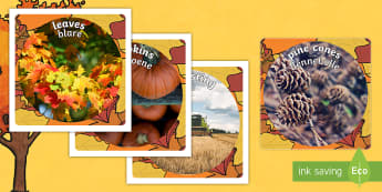 Autumn Display Photo Cut-Outs English/Afrikaans - Leaves, season, colours, brown, yellow, blare, seisoen, EAL