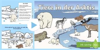 Sachunterricht Tiere und Pflanzen Primary Resources - Page 7