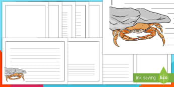 Crab Under Rock Landscape Page Borders- Landscape Page Borders - Page border, border, writing template, writing aid, writing frame, a4 border, template, templates, landscape