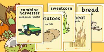 Harvest Display Posters Romanian Translation - romanian, harvest