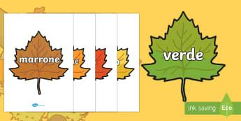 Colori sulle foglie autunnali Poster - colori, autunnali, autunno, foglie, rosso, arancione, italiano, italian, materiale, scolastico