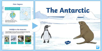 The Antarctic Polar Region CfE Second Level PowerPoint - Scott, Explore, Science, ppt, animals, life, antarctic, polar