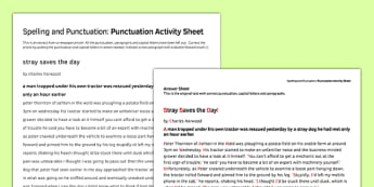 Punctuation Correction Worksheet / Activity Sheet - spelling, punctuation, worksheet