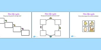 Hen Life Cycle Worksheets - Hen, egg, chick, hatch, Life cycle, Foundation stage, knowledge and understanding of the world, investigation, living things