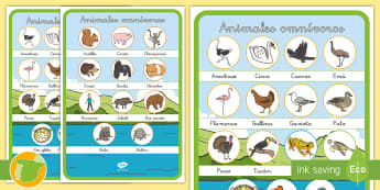 Pósters: Animales omnívoros - vocabulario, animales, omnívoros, clasificación animales, dieta,Spanish