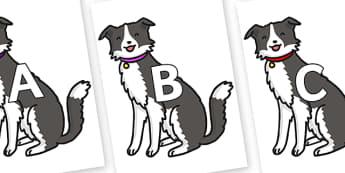A-Z Alphabet on Dog - A-Z, A4, display, Alphabet frieze, Display letters, Letter posters, A-Z letters, Alphabet flashcards