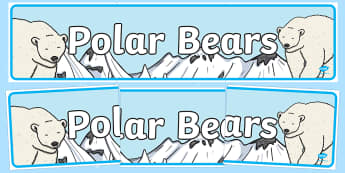 Polar Bears Display Banner