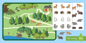 Woodland Animal Habitats Activity - EYFS Owlets, Owl Babies, Martin Waddell, owl, nature, british, wildlife, nocturnal, night, animals,