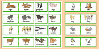 48 Regular Plural Cards - SLI, grammar, EAL, language disorder, Language delay
