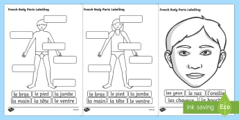 French Body Parts Labelling Worksheet - French, Body, Part, Label
