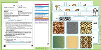 EYFS Pattern Match Adult Input Plan and Resource Pack - Dear Zoo, Rod Campbell, animals, letter to the zoo, pattern , skin, match, colour, stripe, zig zag,