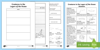 Creatures in the  Layers of the Ocean Read and Draw Worksheet / Activity Sheet  - Ocean, under the sea, sea creatures, life under water, sealife, oceen, ochean, layers, laiers, the a