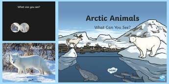 Arctic Animals What Can You See? PowerPoint - The Arctic, Polar Regions, north pole, south pole, explorers, polar animals, animals