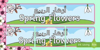 Spring Flowers Display Banner Arabic/English - Spring, flowers, british flowers, woods, woodlands, seasons, display, banner, EAL,Arabic-translation
