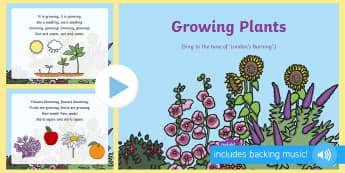 Growing Plants Song PowerPoint - On the Farm, plants, growth, growing, farming, seeds, singing, song time, planting